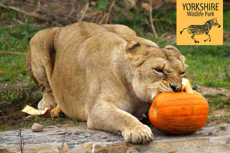 Yorkshire Wildlife Park - Park Entry and Halloween Safari Experience with Live Entertainment and Firework Display for Two  - Save 53%