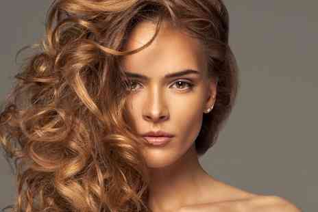 Esquire - Cut, Blow Dry and Conditioning with Highlights or Full Head of Colour - Save 56%