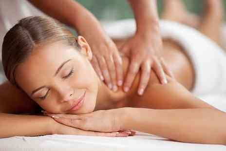 Wild Ginger - One Hour Reiki Massage, a Full Body Shiatsu Work Out or Indian Head Massage - Save 39%