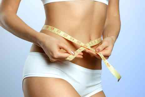 The Laser House - One session of cryo lipo   - Save 80%