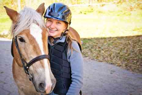 Edinburgh & Lasswade Riding Centre - One Horse Riding Lesson or Hack  - Save 50%