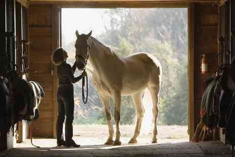 Fox Hills Farm and Riding Centre - Stable Management Experience for One or Two  - Save 50%