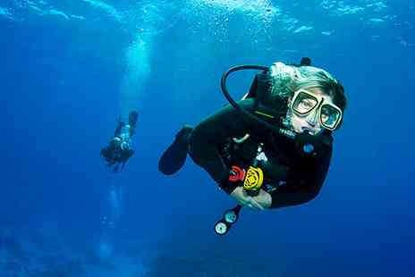 Academy Divers - PADI Open Water Diver Referral Course  - Save 79%