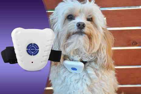 Aven Republic - Ultrasonic dog collar that aims to reduce barking - Save 83%