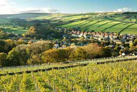Holmfirth Vineyard - Vineyard Tour Tastings Afternoon Tea and Wine for Two - Save 50%
