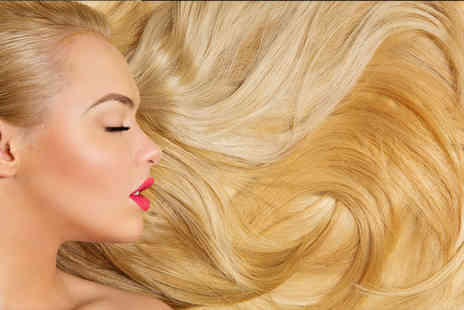 Elle Hair and Beauty - Cut, half head of highlights and blow dry, tea or coffee   - Save 81%