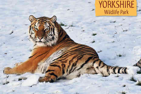 Yorkshire Wildlife Park - Full Day Park Admission with Entry to Christmas Market for Two - Save 0%