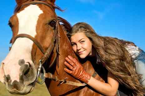 Fordbank Equi Centre - Horse Riding Lesson   - Save 0%