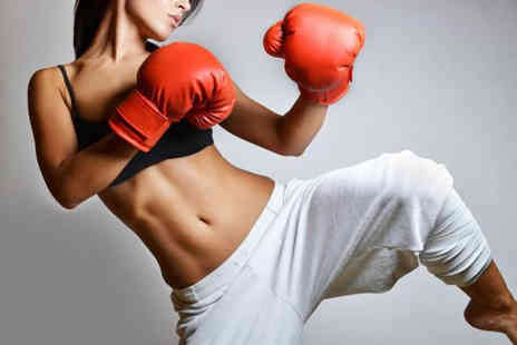 Elemental Kickboxing Academy - Three sessions of kickboxing personal training  for one  -  Save 88%