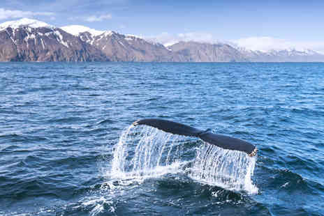 Worldwide Tours and Travel - Three Nights Stay with Northern Lights Or Whale Watching Trip - Save 29%