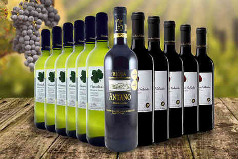 Global Deals - 12 Bottles of Rioja Mix Canals Nubiola Wine - Save 63%