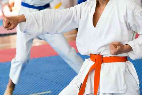 MSC Martial Arts - Three Martial Arts Classes or a One Month Membership  - Save 80%