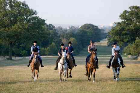Wayside Stables - Two Hour Windsor Great Park Hack on Weekdays  - Save 41%