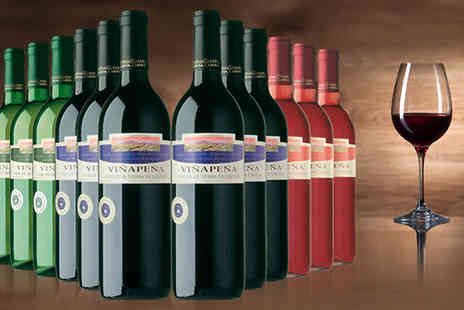 Global Deals  - 12 Bottle Vinapena Wine Mix - Save 75%