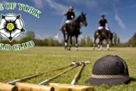 Vale of York Polo Club - Two 60 Minute Polo Lessons For Two - Save 66%