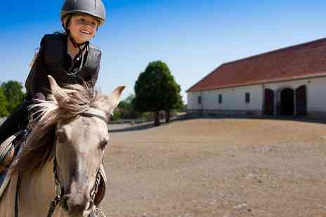 Bridleways Equestrian Centre - 30 Minute Private Riding Lesson  - Save 53%