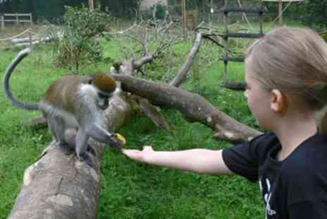 Dartmoor Zoo - Shadow A Zookeeper for a Day for Two - Save 0%