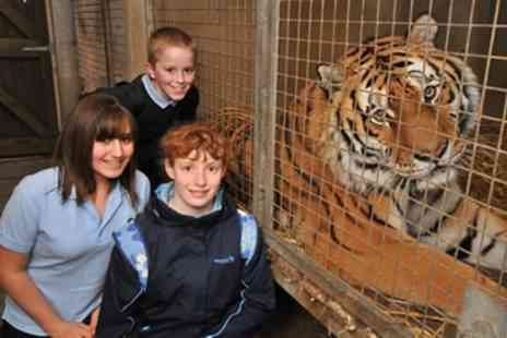 Dartmoor Zoo - Tiger Encounter for Two  - Save 0%