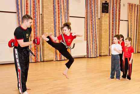 Inspired Martial Arts - One Month of Martial Arts Classes for Kids Plus a Training T Shirt  - Save 0%
