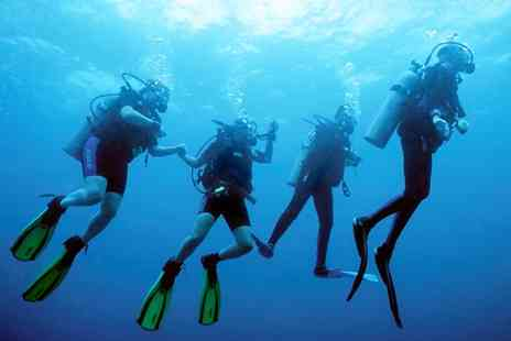Essex Scuba - Discover Scuba Diving Session for One or Two - Save 42%