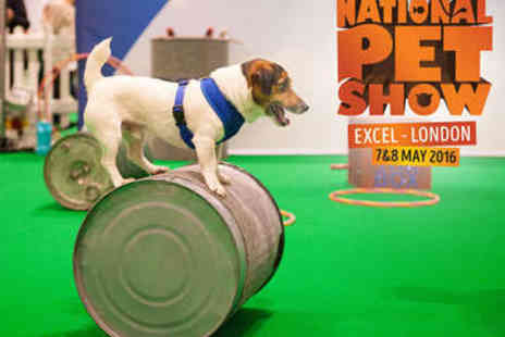 ExCel  - The National Pet Show Ticket  - Save 26%