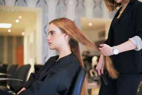 casey sheldens - Wash, Cut and Blow Dry  - Save 53%