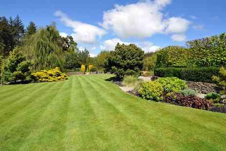 Greensleeves - Up to 400 Sq Metres of Lawn Treatment  - Save 58%