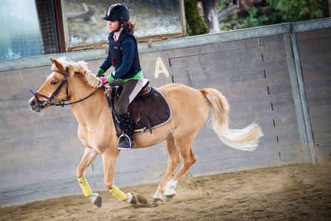 Raybrook Riding - One hour group horse riding lesson  - Save 50%