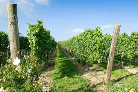 Cottonworth -  Hampshire Vineyard Tour for 2 with Tastings & Lunch - Save 47%