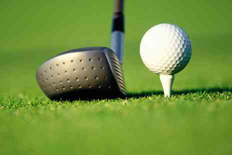 David Bailey Golf Academy - 50 Minute Golf Lesson with Analysis Plus Optional Custom Fitting - Save 72%