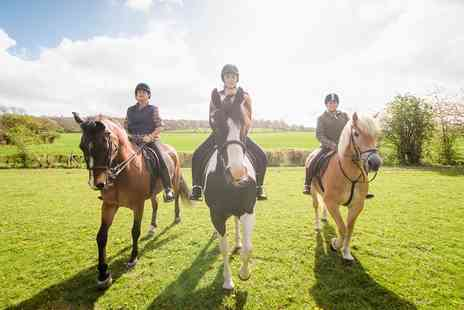 Aldersbrook Riding School - 3 Hour Horse Riding Experience - Save 0%