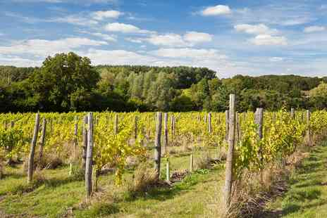 Sedlescombe Organic Vineyard - Sussex Vineyard Tour, Tasting & Lunch for 2  - Save 41%