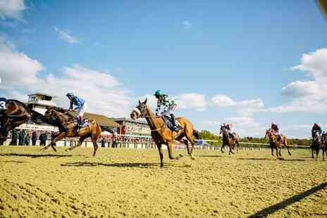 Lingfield Park - Summer Racing and Live Music Two Tickets with Jug of Pimms - Save 50%