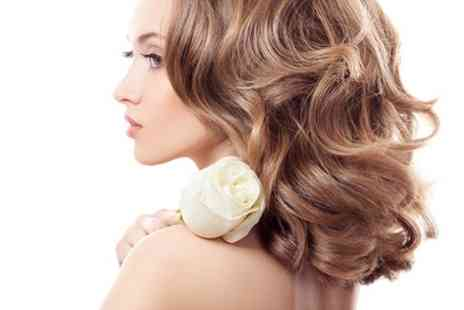 Adele Louise Beauty Studio - Wash, Cut and Blow Dry with Conditioning Treatment or Highlights - Save 62%
