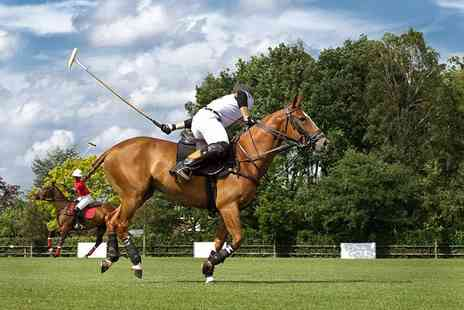Activity Superstore - Discover Polo horse riding experience - Save 0%