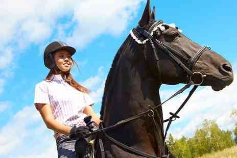 Edinburgh & Lasswade Riding Centre - One Hour Horse Riding Lesson or Hack - Save 50%