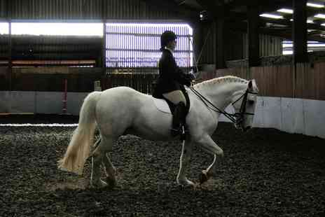 Tannoch Stables - 90 Minute Indoor Horse Riding Lesson - Save 61%