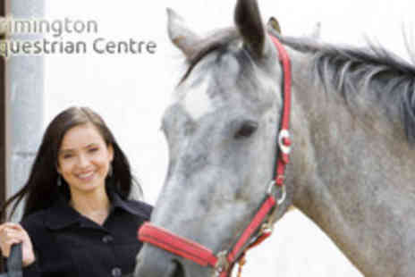 Brimington Equestrian Centre - 1 Hour Riding Lesson and 1½ Hours of Horse Care - Save 71%