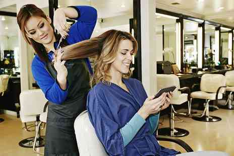 Stylistics - Wash, Cut and Blow Dry with Optional Highlights or Colour - Save 27%