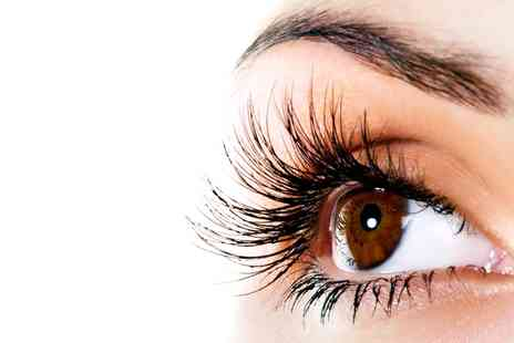 Stylistics - Full Set of Eyelash Extensions with Optional Eyebrow Shape and Tint - Save 49%