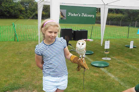 Fixter Falconry - One hour falconry experience and refreshments for one child or two children - Save 60%