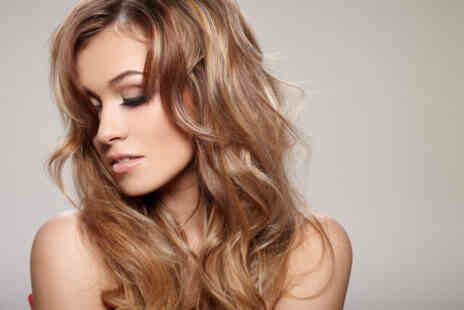 The Hair Apartment - Half Head of Foils or Full Head of Colour with Cut & Blow Dry - Save 0%
