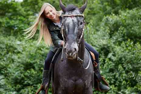 Unicorn Equestrian - Two Hour Horse Riding for One or Two - Save 52%