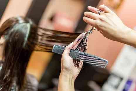 HOB Salons Camden - Womens Haircut and Finish - Save 0%
