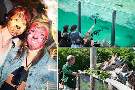 Zoo Lates - £9 for a ticket to Zoo Lates on 8th July worth £20.50 - Save 56%