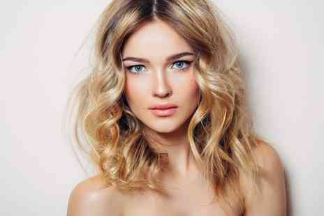Hollands Style Council - Wash, Cut, Blow Dry and Conditioning Treatment - Save 0%