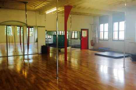 A X Pole Dancing Studio - Up to Eight 90 minute Pole Dance Classes for One or Two - Save 53%