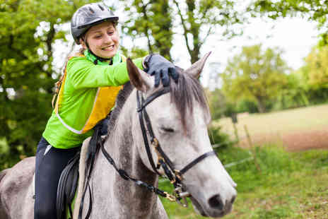Bridleways Equestrian Centre - 30 minute private horse riding lesson - Save 46%
