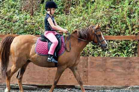 Lenamore Stables - 60 Minute Riding Lesson for up to Two Children or Adults - Save 50%