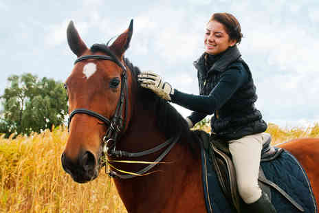 Bridleways Equestrian Centre - One hour group hacking experience with Bridleways Equestrian Centre, Great Bookham - Save 58%